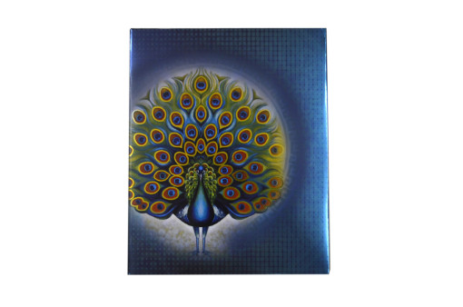 Shiny Exclusive Peacock Theme Wedding Card PR 934